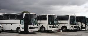 Miami Coach & Tours
