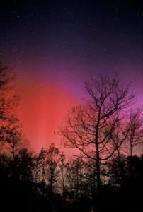 Ronale Zincone Photography, West Kingston — Northern Lights
