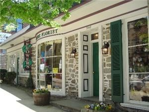Rothe Florists, Philadelphia — Our Storefront in historic Mt. Airy, Philadelphia.  We have been at the same location since 1908.  Truly, your Local Family florist for 4 Generations.