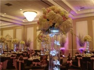 Floral Concierge - Daytona Beach