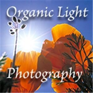 Organic Light Photography