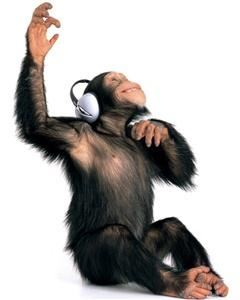 Digital Monkey Music