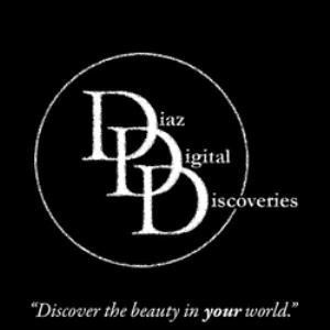 Diaz Digital Discoveries - Lee