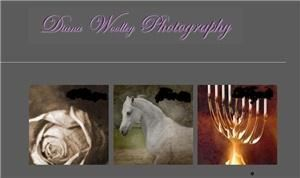 Diana Woolley Photography
