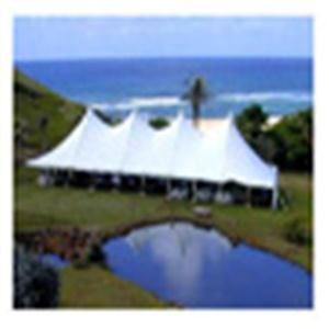 Elite Tent Rental, Holly — Elite Tent Rental has been in the party planning Industry for 10 plus years servicing Oakland, Genesee, and Lapeer counties. We are committed to making your party planning easy and affordable. Our mission is to make planning your graduation, wedding, reunion, or family/work event everything you were wishing for with no hassle. We ensure our equipment to be on time and clean, and our service is friendly and reliable. 