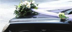Wedding Limousine Services by PJ's World Wide