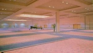 Ballroom A-D, Tampa Convention Center, Tampa
