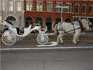Capitol City Carriage Services