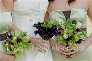 Cheshire Tree Floral Designs, Mount Kisco — For this wedding the bride carried a bouquet of two types of calla lilies. The bridesmaids carried bouquets in coordinating colors which included calla lilies, cymbidium orchids,