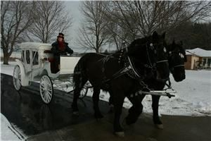 Top Hats and Tails Carriage Company, Ortonville