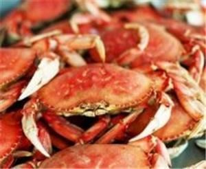 Dad's Crabs, LLC, Falls Church — Crab Feasts, Crab Leg Feasts, Lobster Feasts, Clam Bakes, Shrimp Boils, Crawfish Boils, Oyster Roasts, Fish Fry's, and  Barbeque for weddings, receptions, meetings and private parties at your home, office, the beach or any special location you can dream up.