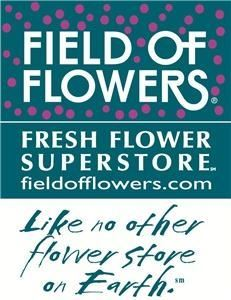 Field Of Flowers - Boca Raton