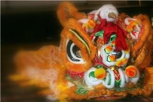 Chinsese Dragon dancers, Washington — THe Chinese Dragon/Lion is suitable for any event. The Dragon/Lion dance is an ancient ritual used to drive away evil spirits and bring GOOD LUCK! This ritual dance can be performed in any size space.