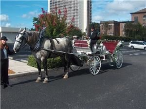 Jacksonville Carriage Company