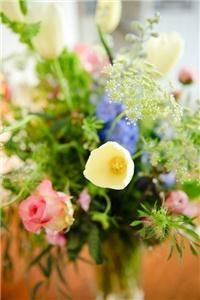 Forget me not Florist - Pittsfield