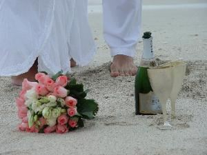 Destination Weddings of Florida, Inc.