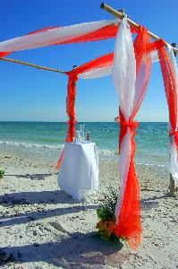Magical Moment Weddings, Lehigh Acres — http://www.magicalmomentweddings.com 239-369-7797 or 239-878-3526