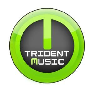 Trident Music Services, Brandon — Trident Music offers the best DJ service for your Socials, Weddings Ceremony/Receptions, Birthday Parties,Christmas, Live Music, Karaoke, Windups, School and College Functions. The best and professional lightings and Sound to make your party more memorable. Just a Call......We get your party, the best ever!!!!..dj@tridentmusic.ca. Book your event before july 31st. Avail 10% discount