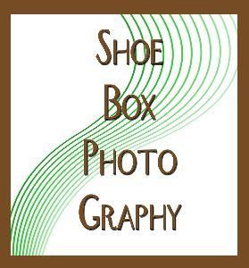 SHOEBOX PHOTOGRAPHY