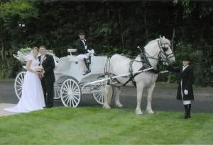 K & D Carriage Service