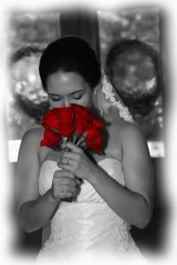 Blue Rose Photography