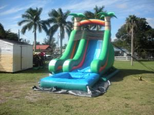 Animated Bounce House Rentals