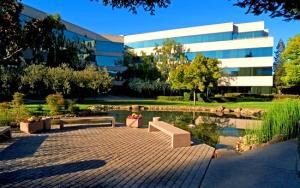 Bay Business Centers | Pleasanton