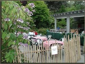 Smokey Joe's Cafe, Woodland Park Zoo, Seattle — Smokey Joe's