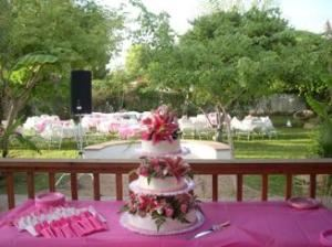 Groves at Greenfield- Morning Wedding and/or Reception Package Starting at $900, The Groves Wedding Garden and Reception Center, Mesa — 606