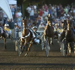 Cal Expo Harness Racing
