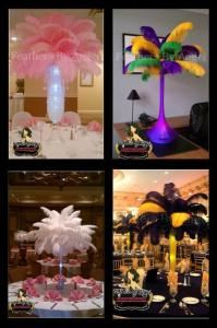 Feathers By Angel-Ostrich Feather Centerpieces - Detroit
