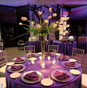 Corporate Events, 6 Degrees Event Planning Company, Saint Louis