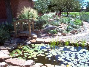 The Garden Package up to 200 guests, The Albuquerque Garden Center, Albuquerque