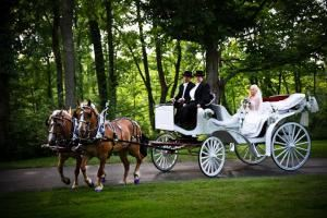 Quaker Trace Carriage Company