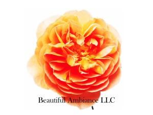 Beautiful Ambiance LLC, Detroit