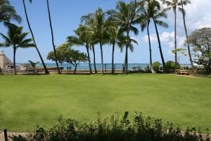 Aquarium Lawn, Waikiki Aquarium, Honolulu — Beautiful lawn where your event would take place.