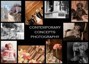 Contemporary Concepts Photography, Kingston
