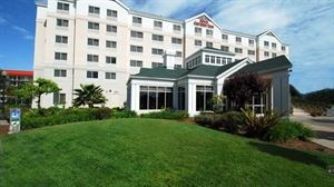 Hilton Garden Inn San Francisco Airport/Burlingame