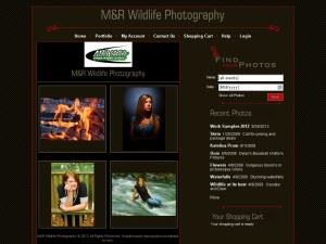 MRWildlife Photography