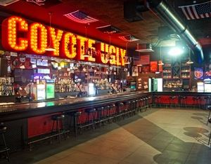 Coyote Ugly Saloon New Orleans