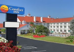 Comfort Inn Apple Valley (TN135)