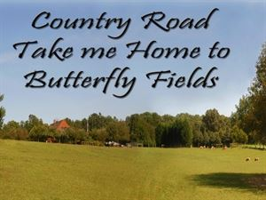 Butterfly Fields Bed and Breakfast