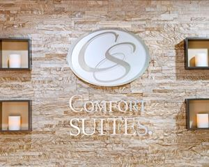 Comfort Suites Inn at Ridgewood Farm (VA018)