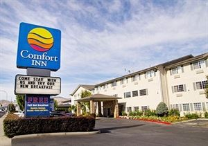 Comfort Inn Downtown