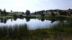 Mountain Springs Golf Club