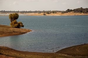 Folsom Lake State Recreation Area