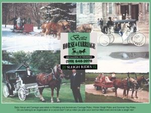 Beitz Horse & Carriage Service