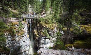 Maligne Canyon Restaurant And Gift Shop