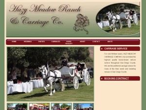 Hazy Meadow Ranch & Carriage Company