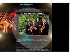 The Camerata String Quartet